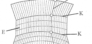 supporting structure for curved envelope geometries [patent]